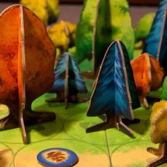 Photosynthesis board game – Written Review